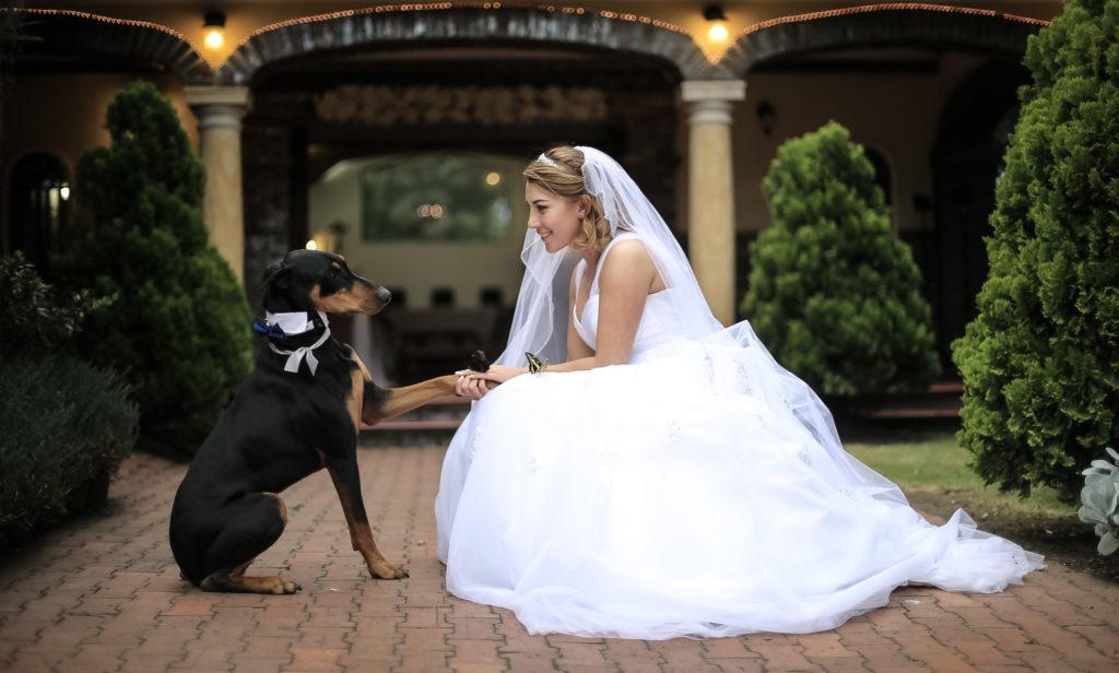 Fotógrafos-de-bodas-en-Colombia-Laura-y-Augusto-30-1-1024x616 LAURA + AUGUSTO