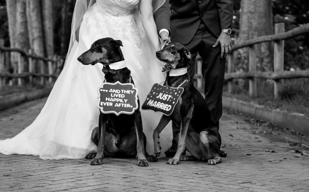 Fotógrafos-de-bodas-en-Colombia-Laura-y-Augusto-43-1024x636 LAURA + AUGUSTO